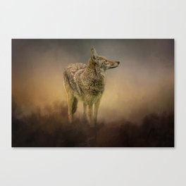 Wiley 1 Canvas Print