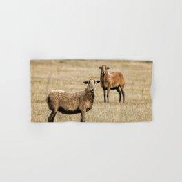 Barbados Blackbelly Sheep Hand & Bath Towel