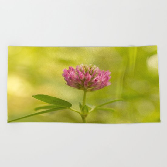 Red clover in August Beach Towel
