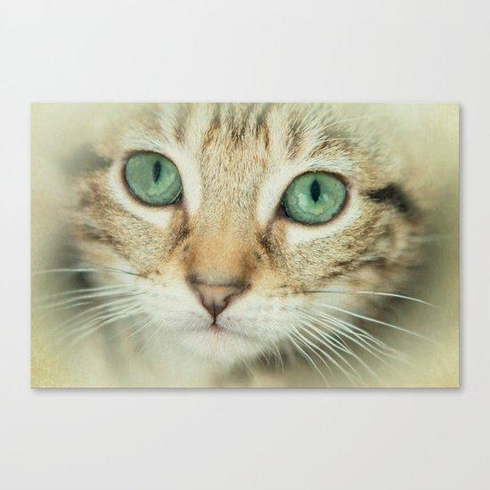 FELINE BEAUTY Canvas Print