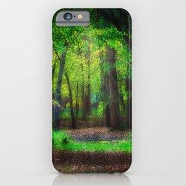 Fall Splendor 2 iPhone Case