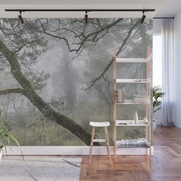 Foggy oaks. Into the woods.... Wall Mural
