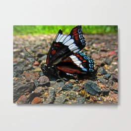"""Hurt no living thing: Ladybird, nor butterfly, Nor moth with dusty wing."" Metal Print"