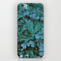 marine iPhone & iPod Skins featuring Marine by ziebras