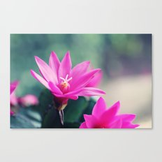 Easter Cactus Canvas Print
