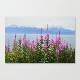 mountain on fire Canvas Print