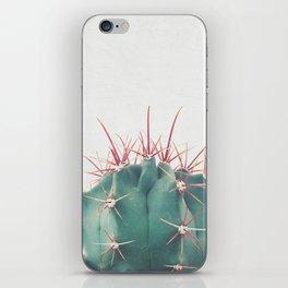 Ferocactus iPhone Skin