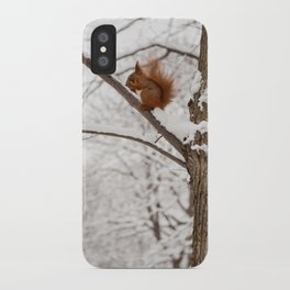 Squirrel sitting on twig in snow iPhone Case