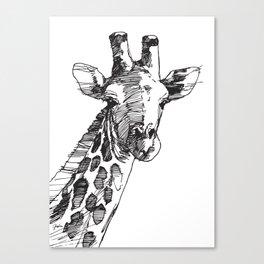 Giraffe - M Canvas Print