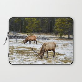 Jasper Locals- Male Elk/Wapiti Laptop Sleeve