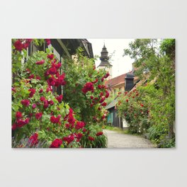 The town of roses Canvas Print