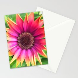 Osteospermum Stationery Cards