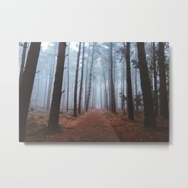 Secrets Of The Woods Metal Print