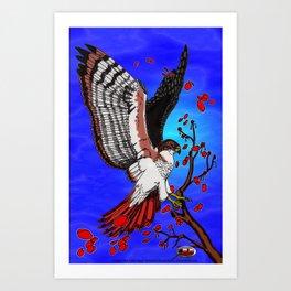 """Tristan's Redtailed hawk"" Art Print"