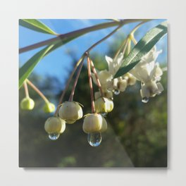 Milk Thistle Flower Metal Print