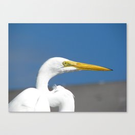 On the pier 1 Canvas Print