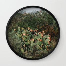 Roadside Cactus | Nature and Landscape Photography Wall Clock