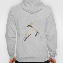 Cute Birds Hoody