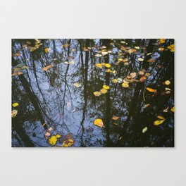 Rest and Reflect Canvas Print
