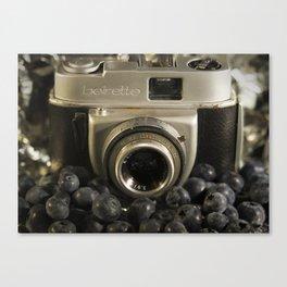 Blueberry Beirette Canvas Print