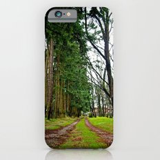 The pathway Slim Case iPhone 6s