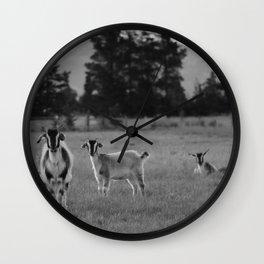 free roam Wall Clock