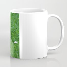 Persian cat in the grass Coffee Mug