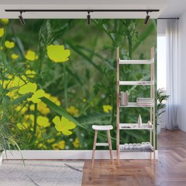 Buttercups Bright Yellow Wall Mural