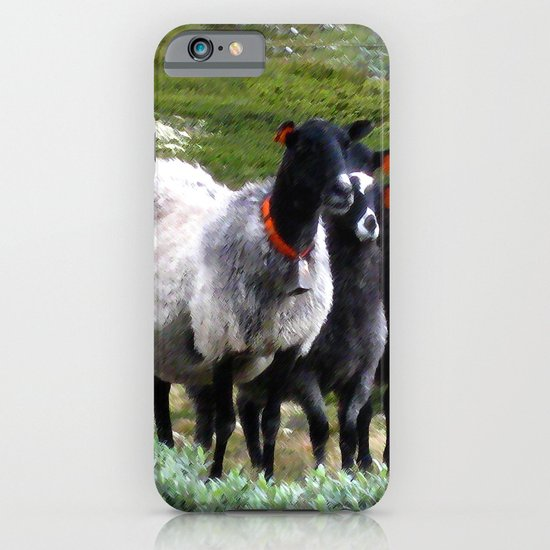 mountain sheep iPhone & iPod Case