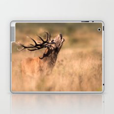 Red Deer Stag Laptop & iPad Skin