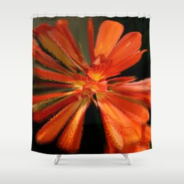 Color Blast Shower Curtain