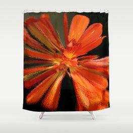 Color Blast Shower Curtain