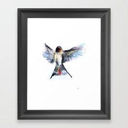 Chilean Swallow Framed Art Print