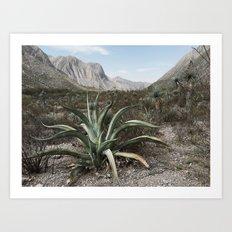 Mexico Century Art Print