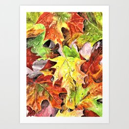 Autumn Leaves with Raindrops, Fall Art, Colorful Leaves, Anne Hockenberry Art Print