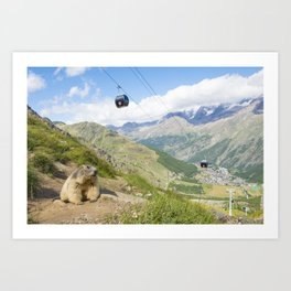 Alpine marmot in its surroundings with in the background a cableway and the village of Saas fee in Switzerland Art Print