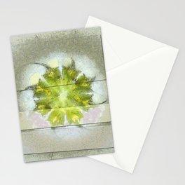 Fugler Beauty Flowers  ID:16165-063310-40571 Stationery Cards