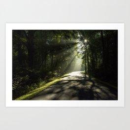 Forest Morning 2 Art Print
