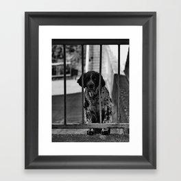 The Prisoner Framed Art Print