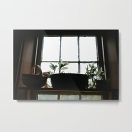 Plants in the Pantry Window Metal Print