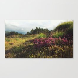Flowers in Galloway Canvas Print