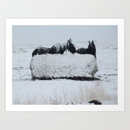 A horses snow day Art Print