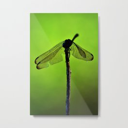 Green Effect Metal Print