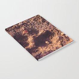 Cheetah Walk Notebook