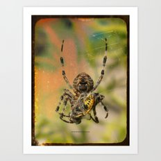 LUNCH WITH MR SPIDER 002 Art Print