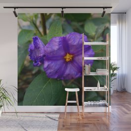 flower and nature - blue flower 2 Wall Mural