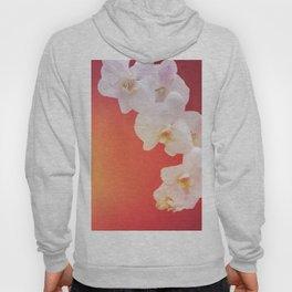Orange Orchid Hoody