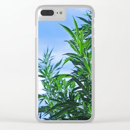 CannaBliss Clear iPhone Case