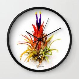 Tillandsia IO Ionantha Air Plant Watercolors Wall Clock