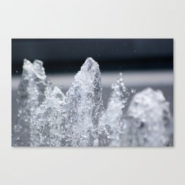 Water6 Canvas Print